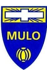 R.K.S.V. Mulo