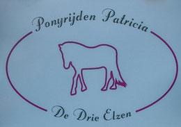 Ponyrijden Patricia de Drie Elzen