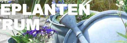 Vaste planten centrum Dierdonk