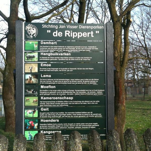 De Rippert