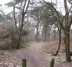 Landschapspark Kloostereind