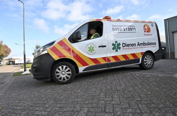 Vervoer Stichting Dierenambulance Helmond veiliger