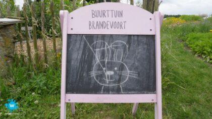 Foto's open dag Buurttuin