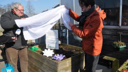 Wethouder onthult zonnepanelen en fruitboomgaard bij Stadstuin Helmond