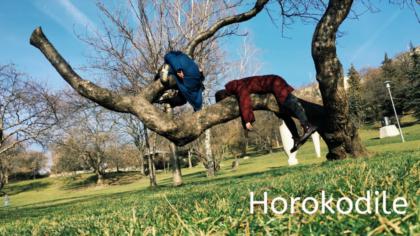 Zaterdag 26 oktober: Horokodile met Flip-Flop, een Poëtische dansvoorstelling