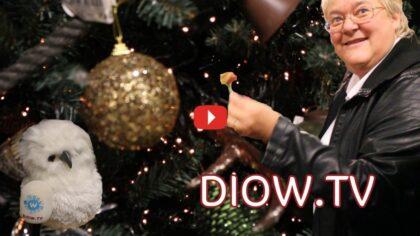 Wat zijn de kersttrends voor 2018?
