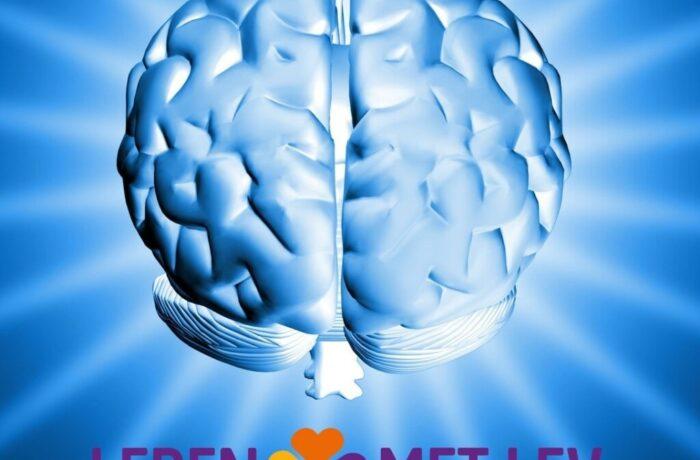 Training voor mensen met Niet Aangeboren Hersenletsel (NAH)