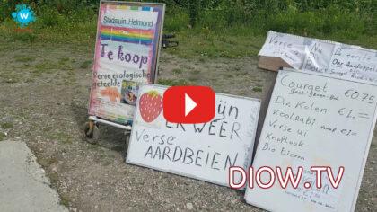 Nieuw: Stichting Vrienden van de Stadstuin Helmond