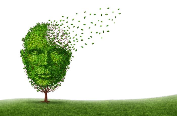 Zoekt u een leuke 'loop-baan'? Alzheimer Nederland zoekt hulp !