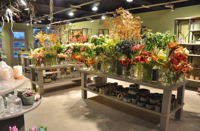 Stiphout heeft de eerste duurzame bloemist