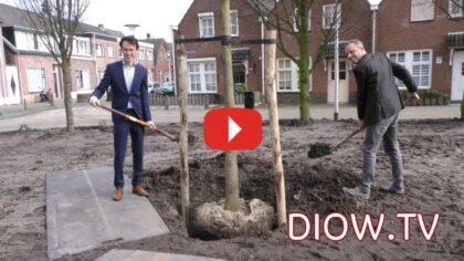 De eerste boom is geplant…