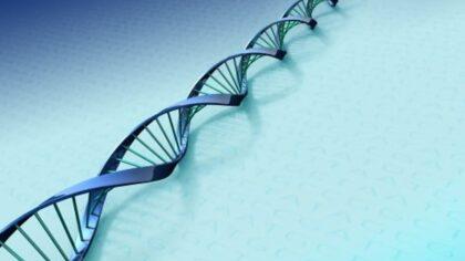 Achtergelaten DNA spoor verraadt 19 jarige inbreker uit Helmond
