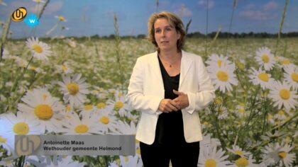 Antoinette Maas stopt na drie jaar als wethouder