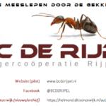 Laat je meeslepen door de gekke mieren