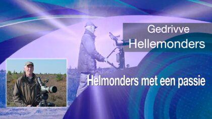 Op zoek naar 'Gedrivve Hellemonders'