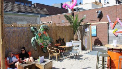 Strand op de Steenweg