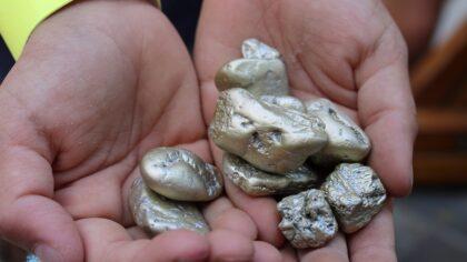 Goudklompjes zoeken in de Rijpelroets
