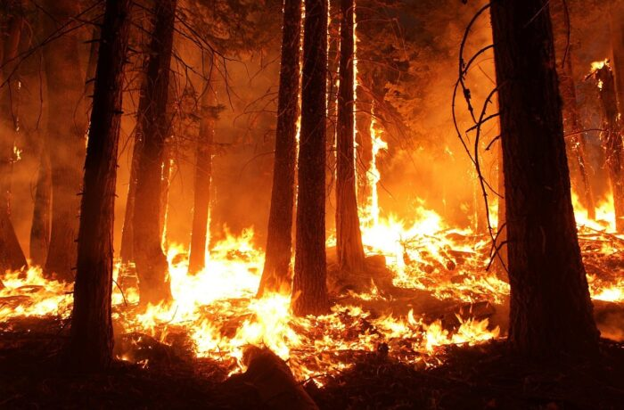 Extra alertheid natuurbranden