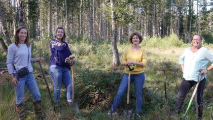 IVN en LEV Helmond in actie bij Stiphouts Langdaalven