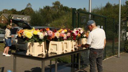 Nieuw concept Dahliatuin zet donateurs in de bloemen