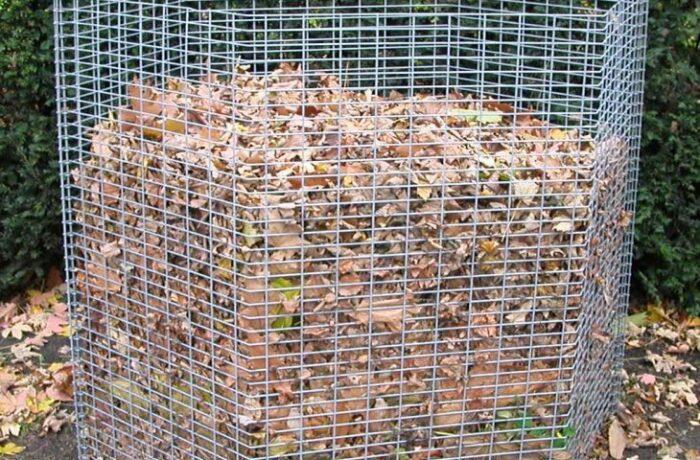 Vanaf 12 oktober weer bladkorven in Helmond