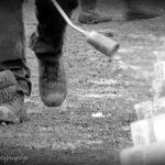 Burgemeester en wethouders van Helmond voor carbidverbod