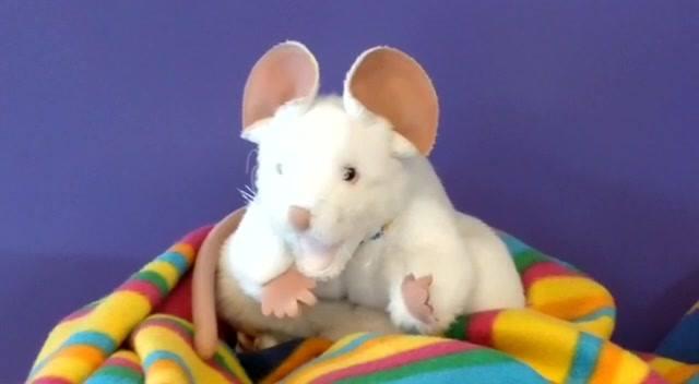 Training PIEP de Muis ondersteunt kinderen en ouders