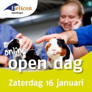 Online open dag Helicon