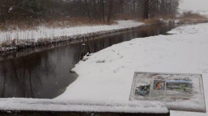 Sneeuwwandeling in het Goorlooppark
