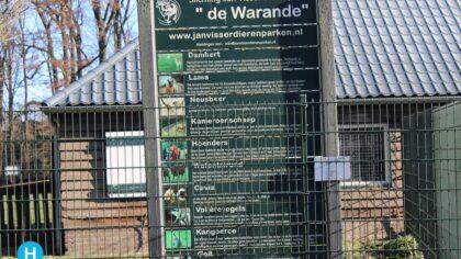 Warandepark krijgt een nieuw Watoetsirund