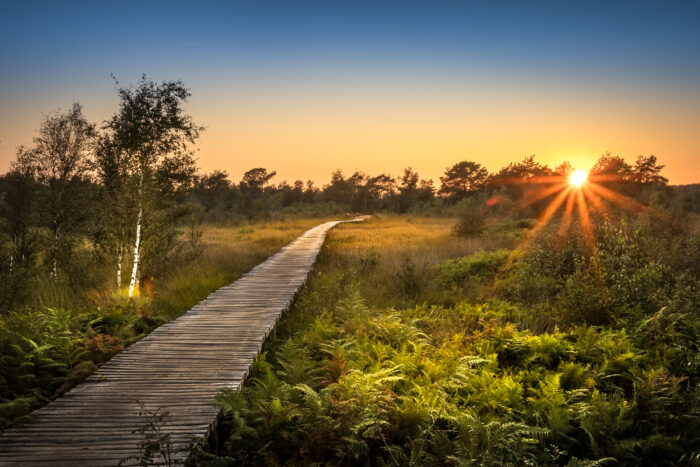 Helmond onderdeel toeristisch platform Land van de Peel