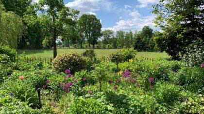 Groei & Bloei open tuinendag 22 augustus