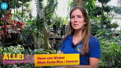 Alles behalve werken: klein Costa Rica