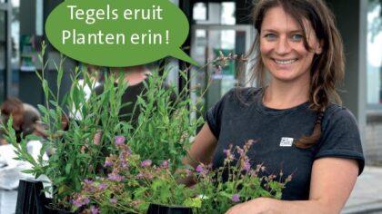 Opnieuw gratis plantjes in ruil voor tegels in Helmondse buurten